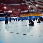 "030_Summer-Seminar-Iaido-Jodo_03-08-2014 • <a style=""font-size:0.8em;"" href=""http://www.flickr.com/photos/79161659@N07/14664292738/"" target=""_blank"">View on Flickr</a>"
