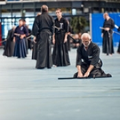 "044_Summer-Seminar-Iaido-Jodo_03-08-2014 • <a style=""font-size:0.8em;"" href=""http://www.flickr.com/photos/79161659@N07/14848461994/"" target=""_blank"">View on Flickr</a>"