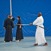 "014_Summer-Seminar-Iaido-Jodo_03-08-2014 • <a style=""font-size:0.8em;"" href=""http://www.flickr.com/photos/79161659@N07/14848461044/"" target=""_blank"">View on Flickr</a>"